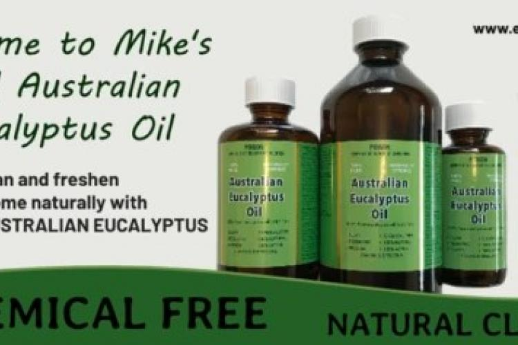 Mike's real eucalyptus
